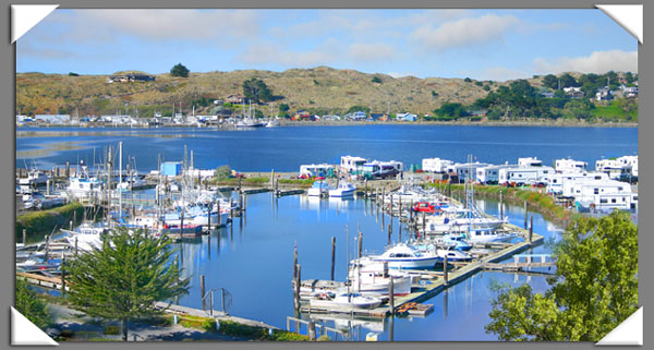 Porto Bodega Marina U0026 RV Park